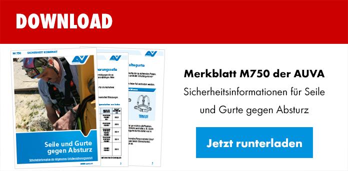Download AUVA Merkblatt M750